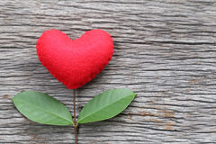 Red heart placed on a old wooden table in connect with branches Stock Photos
