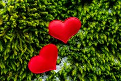 Red heart. On a green background, love, hearts, valentine, white, day, celebration, winter, holiday, healthy, card, decoration, romantic, tree, happy, beautiful royalty free stock photography