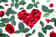 Red heart from the rose leaves in white background Stock Photos