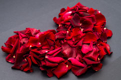 Red heart with rose petals Royalty Free Stock Images