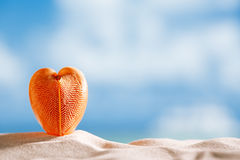 Red heart sea shell with ocean , beach and seascape Royalty Free Stock Photo