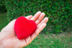 Red heart shape on female's hand for valentine day Royalty Free Stock Photography