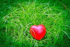 Red heart shape on grass, abstract background metaphor to lonely. Love or neglect the act of being uncared for. for Valentine's day season concept Royalty Free Stock Photo