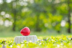 Red heart shape on green natural background in the garden outdoor. Love Valentine's Day healthy Insurance and Charity concepts. Red heart shape on green stock photo