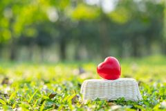 Red heart shape on green natural background in the garden outdoor. Love Valentine's Day healthy Insurance and Charity concepts. Red heart shape on green stock photos