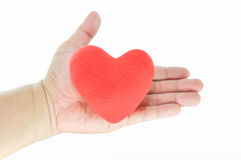 Red  heart shape in hand Stock Images