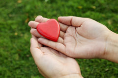 Red heart shape in hands Royalty Free Stock Image