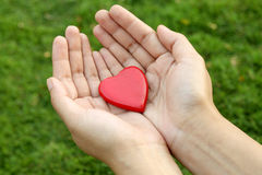 Red heart shape in hands Stock Photo