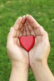 Red heart shape in hands Stock Photography