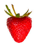 Red heart shaped strawberry isolated Royalty Free Stock Images
