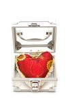 Red heart in silver case Stock Photography