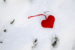 Red heart on snow with fir branches protruding Stock Photo