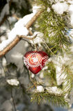 Red heart toy with lace on  a pine branch in the snowy forest. Stock Photography