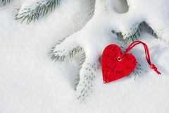 Red heart toy in snow on fir Stock Image