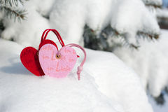 Red heart toy in snow on fir Royalty Free Stock Photos