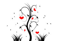 Red heart on tree. The red heart on tree Stock Image