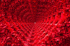 Red heart tunnel. Royalty Free Stock Images