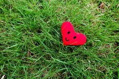 Red heart for Valentines Day concept. Smile face red heart on fresh green grass garden background Stock Images
