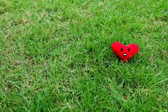 Red heart for Valentines Day concept. Smile face red heart on fresh green grass garden background Stock Photos