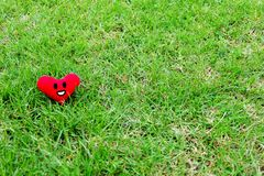 Red heart for Valentines Day concept. Smile face red heart on fresh green grass garden background Royalty Free Stock Photos