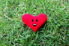 Red heart for Valentines Day concept. Smile face red heart on fresh green grass garden background Stock Photo
