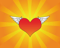 Red heart with white wings. On a radiant background Stock Images