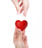 Red heart in woman hand Stock Photo