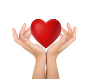 Red heart in woman hand Stock Photos