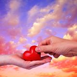 Red heart in woman and man hands. Stock Photo
