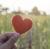 Red heart on woman's hand on flower garden background. Love and Stock Images