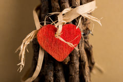 Red Heart on Wrapped Twigs Stock Image