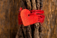 Red Heart on Wrapped Twigs Stock Images