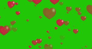 Red Hearts Animation. Loop ready on a green chroma key background. Computer animation on a green chroma key background. Loop ready file stock footage