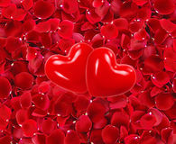 Red hearts on beautiful red rose petals Royalty Free Stock Photo