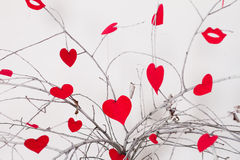 Red hearts hanging on a tree branch. Valentine's Royalty Free Stock Images