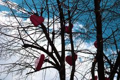 Red hearts are hanging on a tree without leaves against the sky stock photography