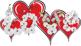 Red hearts and orchid flowers isolated on white Stock Photography