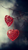 Red hearts on prickly branches. stock image