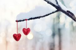 Red hearts on snowy tree branch in winter. Holidays happy valentines day celebration heart love concept. Red hearts on snowy tree branch in winter. Holidays stock images