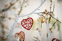 Red hearts on a tree branch. Happy holidays celebration day concept of Valentine`s love heart. Red hearts closeup on a tree branch. Happy holidays celebration Stock Image