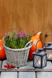 Red heather in wicker basket Royalty Free Stock Photos