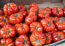 Red heirloom tomatoes in a market in Paris, France Royalty Free Stock Photography