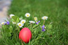 Red hen Easter egg in the flower garden Stock Photo
