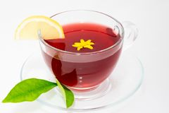 Red herbal tea royalty free stock photography