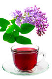 Red Hibiscus tea Stock Photography