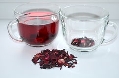 Red Hibiscus tea. Anti-aging effect Royalty Free Stock Image