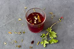 Red hibiscus tea in a glass cup stock photo
