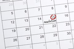 Red highlighter with ovulation day mark on calendar royalty free stock photography