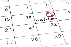 Red highlighter with ovulation day mark on calendar royalty free stock photos