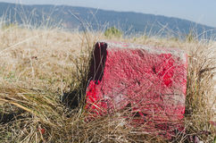 Red hiking marker stone Royalty Free Stock Photography